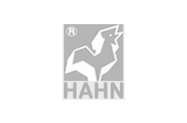 HAHN – Elektrobau GmbH & Co. KG